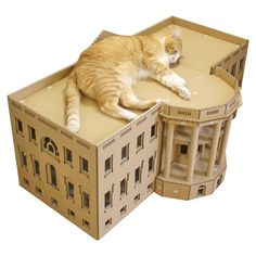 Does your cat have what it takes to be president? In our fictional world cat lovers would love to see your feline roaming the hallways of the White House. Cardboard Cat House, Cardboard Animals, Good Work Ethic, World Cat, Fictional World, Animal House, Plastic Laundry Basket, Some Fun, Cat Lovers