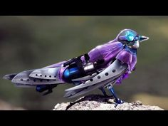 Photoshop Submission for 'Robot Animals' Contest Animal Robot, Robot Bird, Futuristic Technology, Technology Gadgets, Futuristic Art, Technology Design, Invention Of Science, Weird Inventions, Amazing Inventions