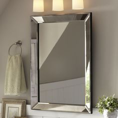 "Birch Lane Henry Mirror  36"" H x 26"" W x 1.75"" D"