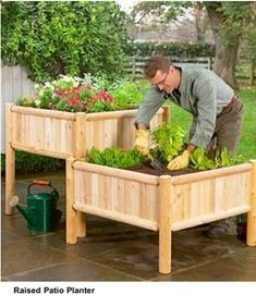 vegetable raised garden bed plans | Vegetable Container Gardening