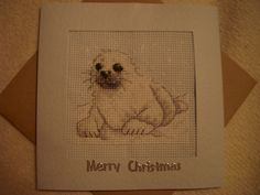 Snow Seal Pup Christmas card for a work friend.