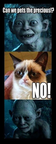 Grumpy Cat  Golem from LORD OF THE RINGS are TOGETHER! :)