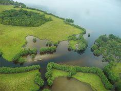 Gabon Loango parc
