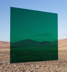 Viviane Sassen - Another colour of the screen inspiration. This green works better because it matches with my colour palette.