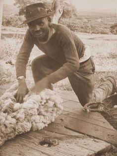 Ciclo_La2 Sheep, Hipster, Around The Worlds, Wool, Portugal, Style, Chop Saw, Star, Stuff Stuff