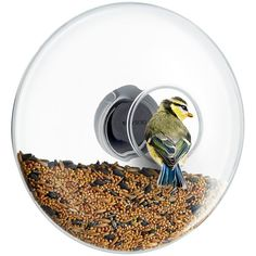 The Eva Solo Window Bird Feeder, available in 2 different sizes. ✔ Made from Frost Proof Glass ✔ Unique Design ✔ The Perfect Gift for a Bird Watcher Cadeau Design, Muuto, Small Birds, Last Minute Gifts, Large Windows, Decorative Objects, Mother Gifts, Bird Feeders, Home Accessories