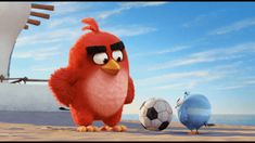 The Angry Birds Movie.... Lol. I wonder if that's supposed to be one of the Blues?