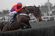 Racing fans counting down days to vintage Cheltenham Festival