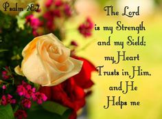 The Lord is my strength and my shield.. PSALM 28:7 - My Daily Inspiration Bible Verses: