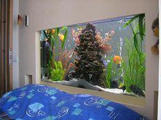 Aquarium/аквариум Saltwater Tank, Saltwater Aquarium, Aquarium Fish Tank, Aquarium Ideas, Fish Tanks, Discus Tank, Acrylic Aquarium, Fishing World, Cute Posts