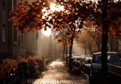 Good Morning #Riseandgrind #fall #morning #sunrise