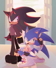 fuckin coked out on sonic Silver The Hedgehog, Shadow The Hedgehog, Sonic The Hedgehog, Sonic And Amy, Sonic And Shadow, Sonic Franchise, Villainous Cartoon, Sonic Screwdriver, Sonic Heroes