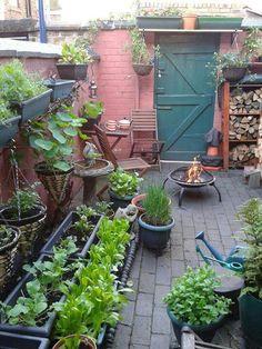 Veg Growing in a small space from Vertical Veg Small space gardening, Garden, Courtyard garden, Vege Small Courtyard Gardens, Small Courtyards, Back Gardens, Small Gardens, Outdoor Gardens, Small Garden Design, Small Space Gardening, Garden Spaces, Balcony Garden