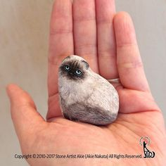 Himalayan cat painted on natural shape stone. She have such a beautiful eyes and fluffy. Size: It does not stand by itself Rock Painting Patterns, Rock Painting Ideas Easy, Rock Painting Designs, Artist Painting, Stone Painting, Art Rupestre, Art Pierre, Himalayan Cat, Painted Rocks Kids