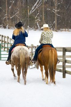 taking the horses out on the ranch on a winter day.