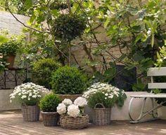 Small courtyard garden with seating area design and layout 107 French Courtyard, Small Courtyard Gardens, Small Courtyards, Small Gardens, Outdoor Gardens, White Gardens, Terraced Backyard, Garden Landscaping, Small Space Gardening