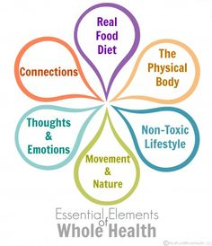This is a great overview of a holistic approach to health incorporating nutrient dense, traditional diet philosophies