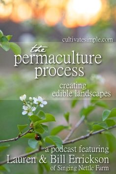 Cultivate Simple 17: The Permaculture Process