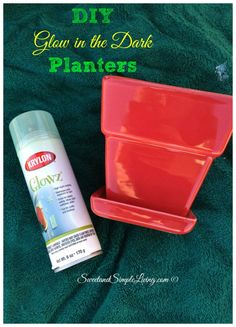 DIY Glow In The Dark Planters | Sweet and Simple LivingSweet and Simple Living