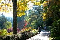 Buchart Gardens in the fall