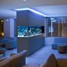Fish tank...