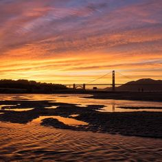 The sunsets around the Bay have been insane lately, and last night's show was one of the best. I captured this at Crissy Field's East Beach, where I'll be co-hosting an Instameet on Saturday at 5:30 p.m. for Worldwide Instameet Day. Hope those of you in the Bay Area can join us! Head over to @wildbayarea for more details.