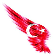 Türk bayrağını nereye koysan yakışıyor.