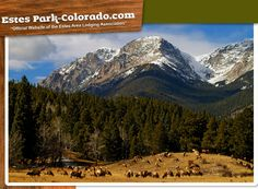 Estes Park Colorado Hotels, Things to Do - Visit Estes Park Colorado Colorado Springs, Vacation Destinations, Vacation Spots, Denver, Estes Park Colorado, Mountain Homes, Open Spaces, Rocky Mountains, Old Houses