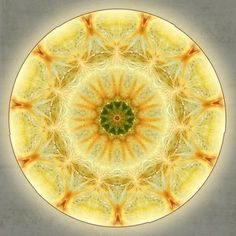 Winter Solstice Sun Mandala created by Sue O'Kieffe