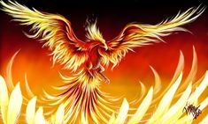 Phoenix by Takaya90.deviantart.com on @deviantART