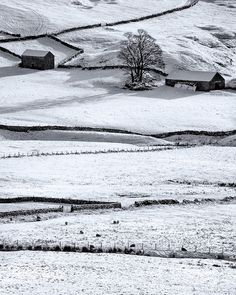 Winter Field, Peak District, Derbyshire