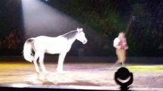 32 Best Memories, My Childhood, Trauma, Horses, Animals, Animales, Animaux, Animal, Animais