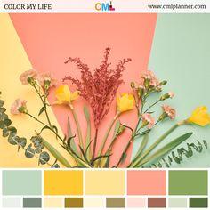 Color Schemes Colour Palettes, Spring Color Palette, Green Colour Palette, Yellow Color Schemes, Website Color Palette, Color Yellow, Green Colors, 5 Panel Cap, Color Balance