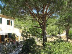 Elba Island The country house