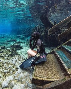 just sitting here dreaming of adventures and travel. What's your dream destination spot? Photo by Underwater Photography, Travel Photography, Photo Bleu, Orlando Parks, Underwater Pictures, Scuba Diving Gear, Cave Diving, Ocean Life, Gopro