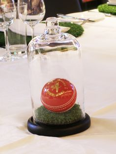 A Cricket Ball on a round of turf in a Cloche