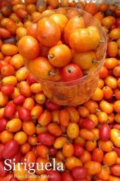 Siriguela - Brazilian fruit