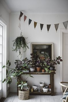 Our weekend diary. Elevated Planter Box, Deco Floral, Green Life, Interior Exterior, Interior Design Inspiration, Decoration, Indoor Plants, Planting Flowers, Living Spaces