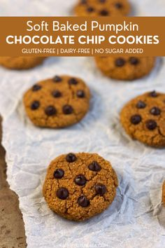 Soft baked pumpkin chocolate chip cookies made with almond flour, oat flour, pumpkin, and vegan protein powder! Gluten-free, dairy-free, and no added sugar. Best Gluten Free Desserts, Healthy Gluten Free Recipes, Best Dessert Recipes, Easy Desserts, Fall Recipes, Whole Food Recipes, Delicious Desserts, Healthy Snacks, Vegetarian Recipes