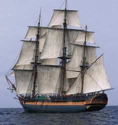 Photo about HMS Surprise Sailing Ship at Sea under full sail with tall ships in the background. Image of yacht, commander, sailing - 7268907 Royal Navy Frigates, Bateau Pirate, Master And Commander, Old Sailing Ships, Full Sail, Wooden Ship, Pirate Life, Submarines, Tall Ships