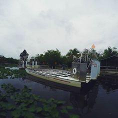#everglades  #boat #gopro #boating #florida #airboat
