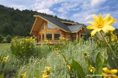 How a Log Cabin Home Can Increase Your Savings Account