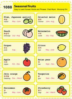 Easy to Learn Korean 1088 - Food: Seasonal Fruits (Vocab) Learn Basic Korean, Learn Japanese Words, Korean Verbs, Korean Phrases, Korean Words Learning, Korean Language Learning, Learn Korean Alphabet, Learning Languages Tips, Korean English