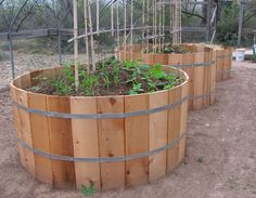 All about Keyhole Gardens. Water efficient and self-composting.