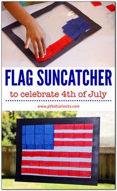 American flag suncat