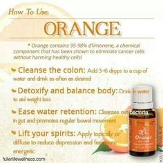 Adding Young Living Essential Oils to your water or any beverage is a great way to introduce your body to these natural, pure, therapeutic grade essential oils. Essential Oils 101, Lemongrass Essential Oil, Orange Essential Oil, Essential Oil Blends, Young Living Oils, Young Living Essential Oils, Young Living Orange, Wellness, Motivation