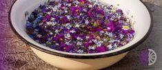 Od Cvjetne nedjelje do uoči Uskrsa se zovu veliki dani. Opći je hrvatski običaj, da se na Cvjetnicu umiva u cvijeću i zelenilu. Tako se uoči Cvjetne nedjelje nabere ljubičica i cvata s raznih voćaka i drina pa se stavlja u vodu. Kad osvane Cvjetnica, svako se čeljade iz kuće umije u toj vodi sa […] The post Tradicija Cvijetnice i običaj umivanja u cvijeću appeared first on Narodni.NET. Sprinkles, Candy, Food, Sweets, Meals, Candy Bars, Yemek, Eten, Chocolates