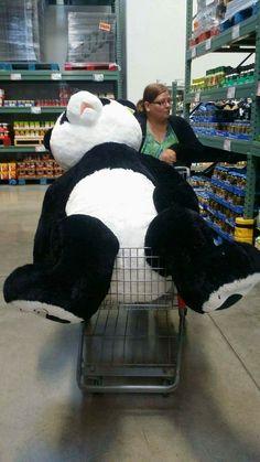 Giant stuffed panda Looks like she is at Sam's Club Big Teddy, Teddy Bear, Cute Stuffed Animals, Cute Animals, Cute Panda Wallpaper, Panda Wallpapers, Cute Baby Cats, Panda Love, Stuff And Thangs
