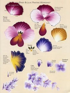 DONNA'S BASIC STROKES - Pansy & Lilac Worksheet