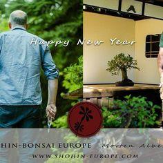 Happy New Year. Spring is here before We know it 🌳 #盆景 #盆栽 #분재 #bonsai #shohin #shohinbonsai #japanese #art #tree #nature #life #feel #albek #mortenalbek  #tokonoma #toko #床 #床の間 #shohineurope